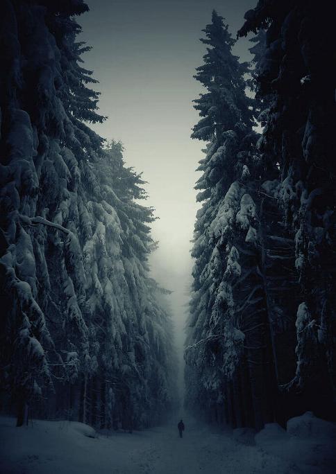 Des Chemins où la randonnée devient un rêve - X_05_t11