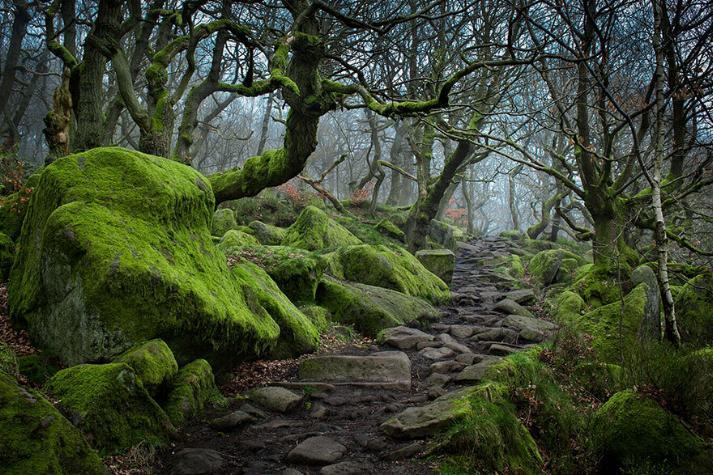 Des Chemins où la randonnée devient un rêve - X_06_a11