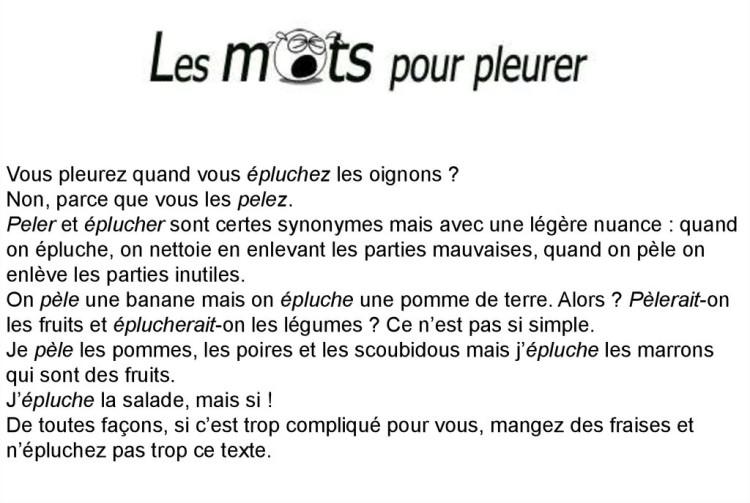 Cocasseries de la langue française * X_07152