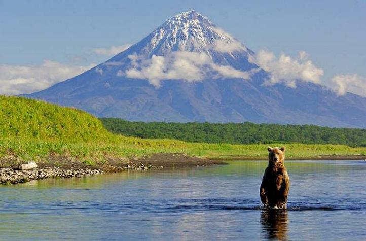 Kamchatka pays des ours et des volcans - X_0839