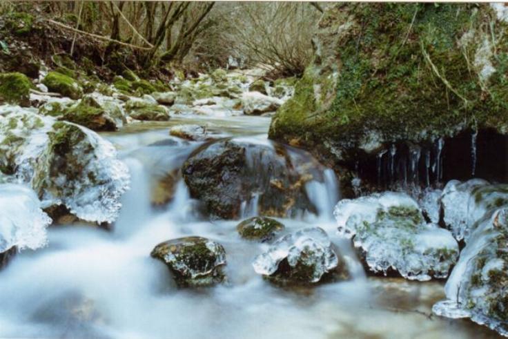 Beauté hivernale * X_0852