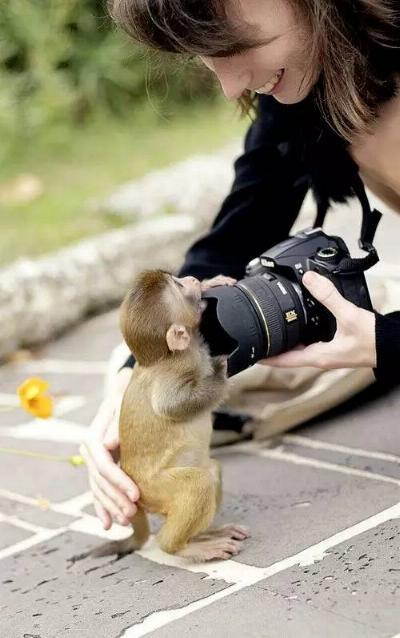 Bravo aux photographes * X_0857
