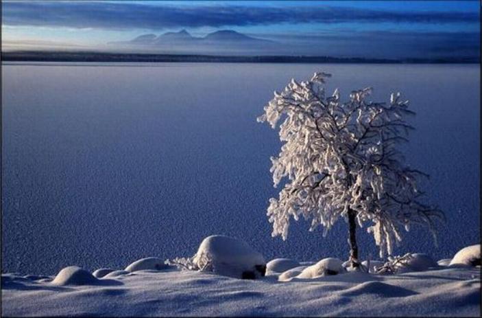 Beauté hivernale * X_1047