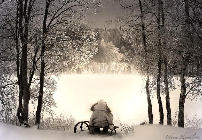 Beauté hivernale * - Page 5 X_10712