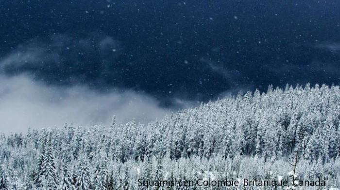 Beauté hivernale * - Page 5 X_11317