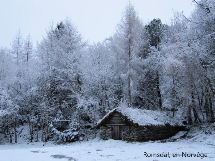 Beauté hivernale * - Page 5 X_11618