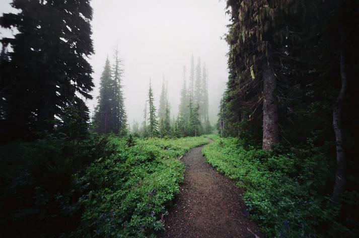 Des Chemins où la randonnée devient un rêve - X_11_u10