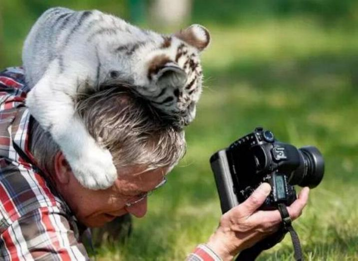 Bravo aux photographes * X_1252
