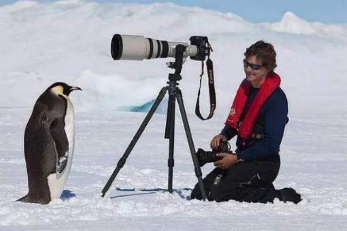 Bravo aux photographes * X_1649