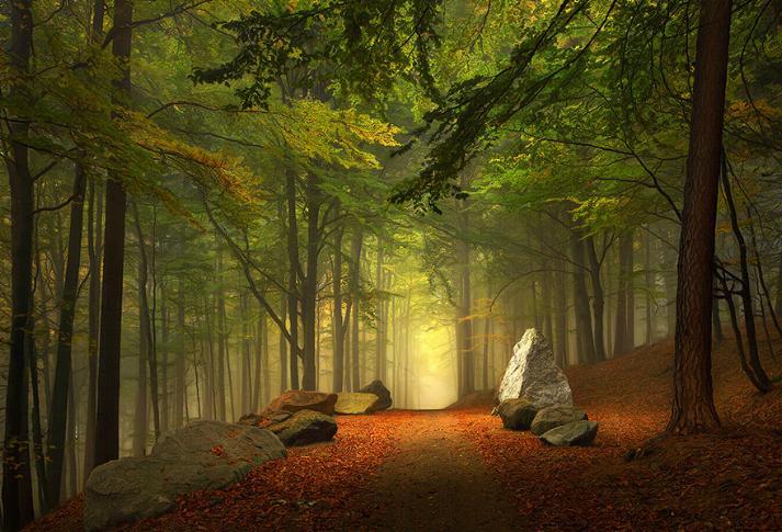 Des Chemins où la randonnée devient un rêve - X_16_a11