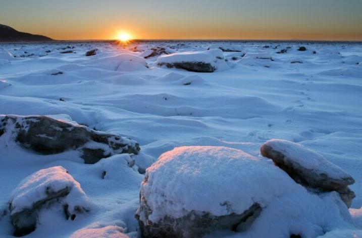 Beauté hivernale * X_2039