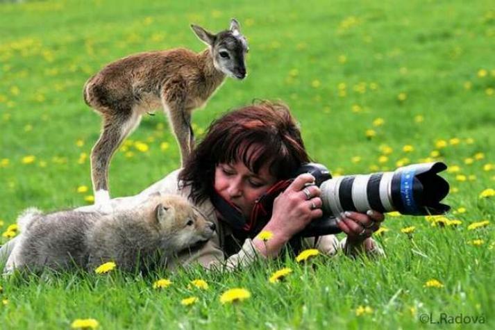 Bravo aux photographes * X_2045