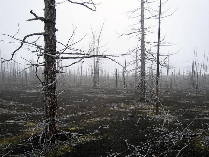 Kamchatka pays des ours et des volcans - X_2129