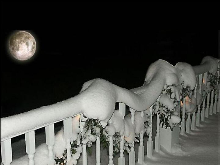 Beauté hivernale * X_2137