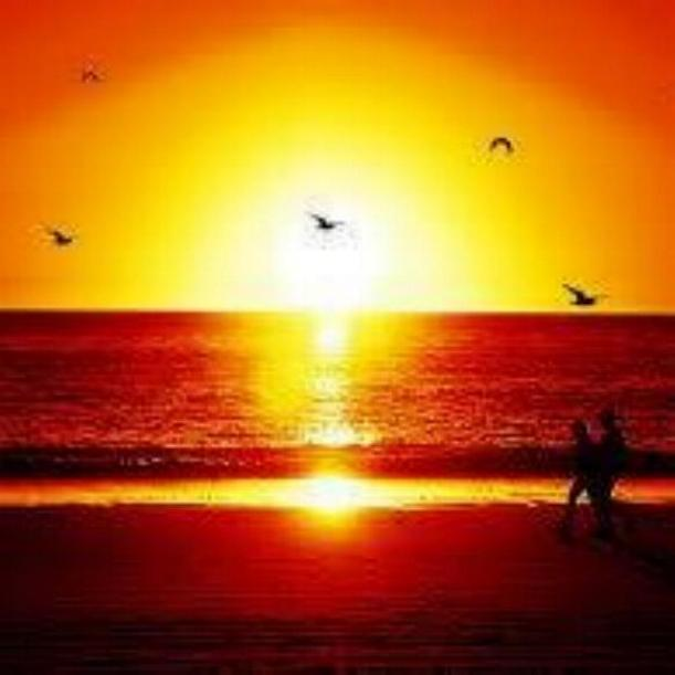 Couchers de soleil - magnifique !!! * - Page 2 X_3739