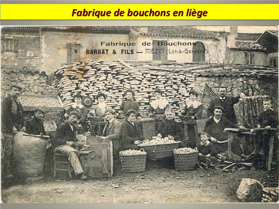 Ouvriers en 1900 - Magnifiques archives * - Page 2 X_4419