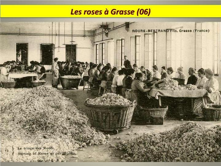 Ouvriers en 1900 - Magnifiques archives * - Page 2 X_4918