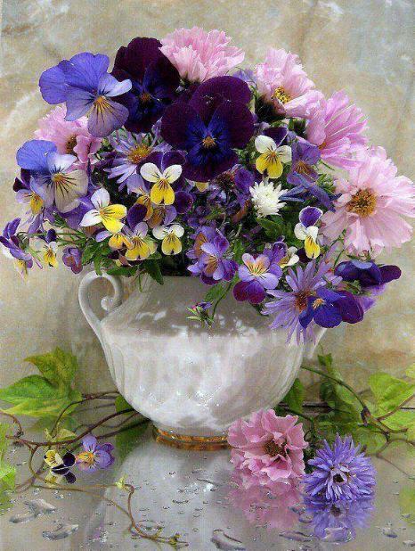 Symphonie florale * - Page 2 X_5720