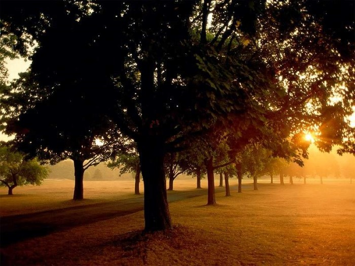 Couchers de soleil - magnifique !!! * - Page 4 X_7419