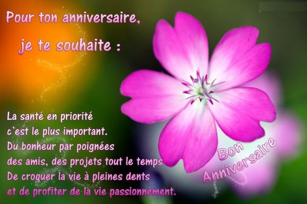 Pour Nadou  X_anni12