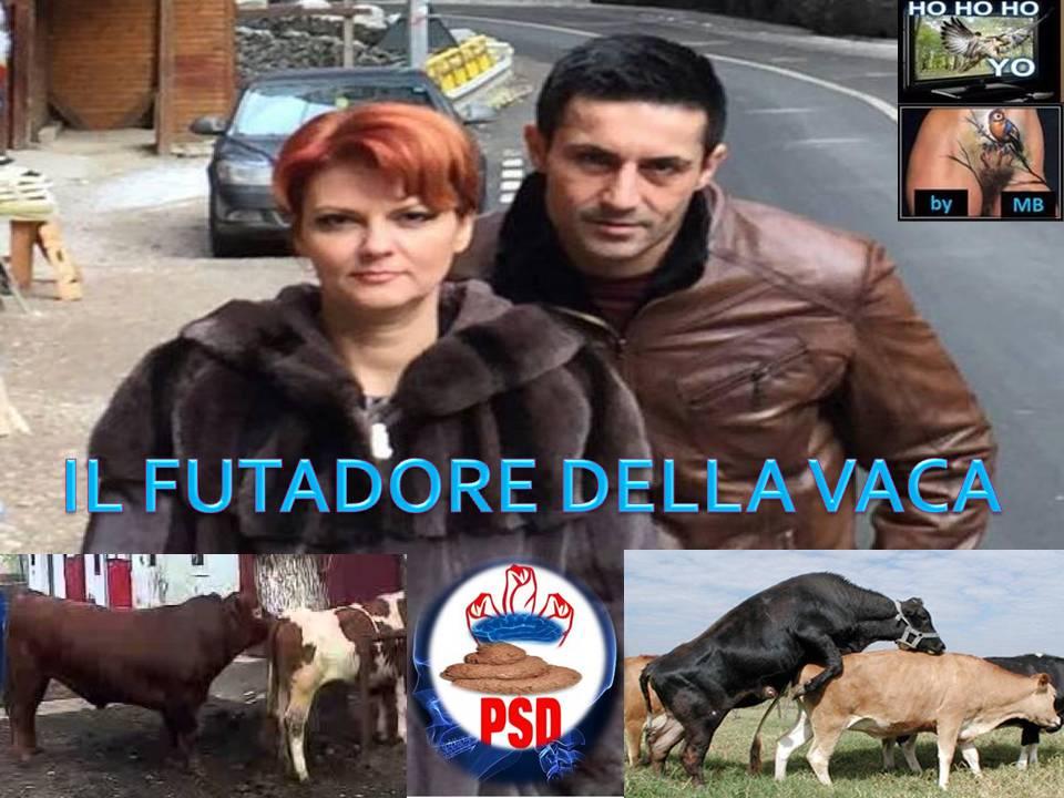 VULVUȚA Vasilescu: îndrăgostită de Fetească și de Riesling, se strecura sub biroul președintelui partidului și-l făcea să transpire și să respire cu dificultate Il_fut10