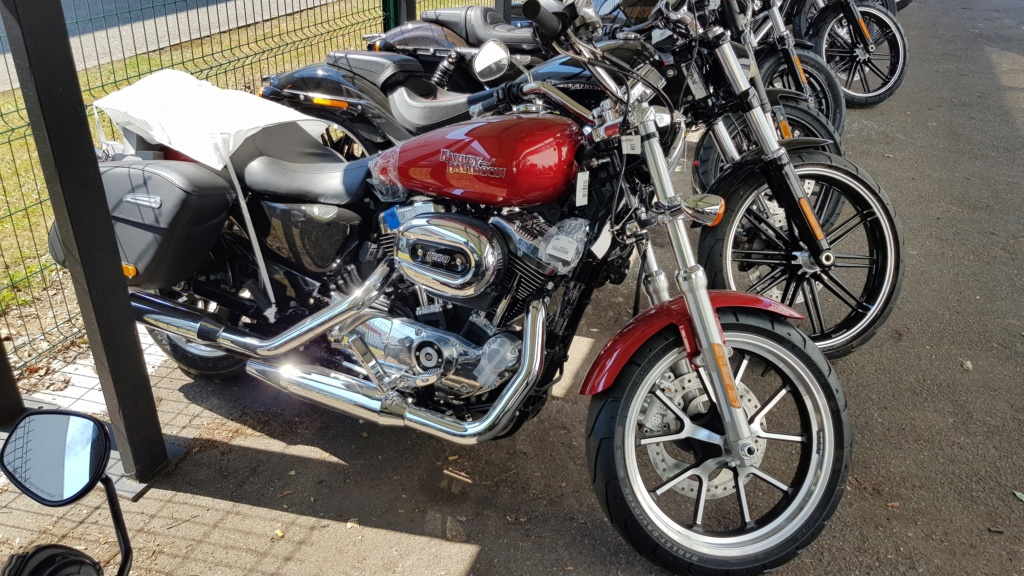 Elle est arrivée !!!! Harley Davidson Sporster 1200 Superlow T/XT 1200 T 20180610