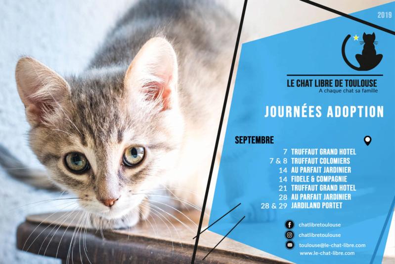 [Adoptions] Samedi 28 septembre 2019 :  Au Parfait Jardinier Journz10
