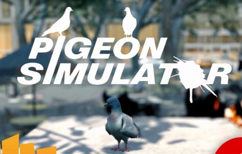 Tu es un gros Pigeon !! voici des jeux qui te combleront 3-2-8810