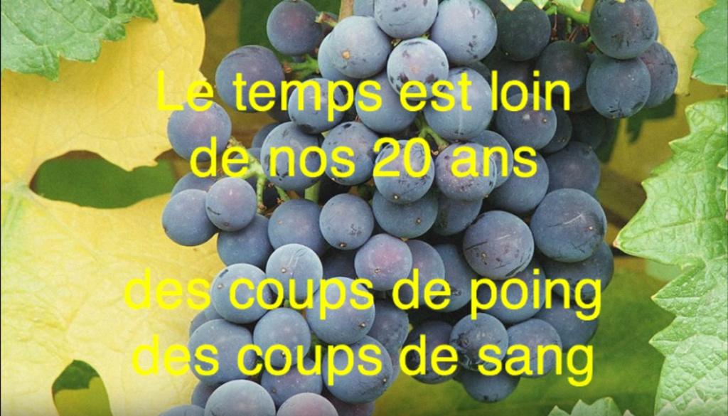 Chapionnnat de France de TREC Rem10