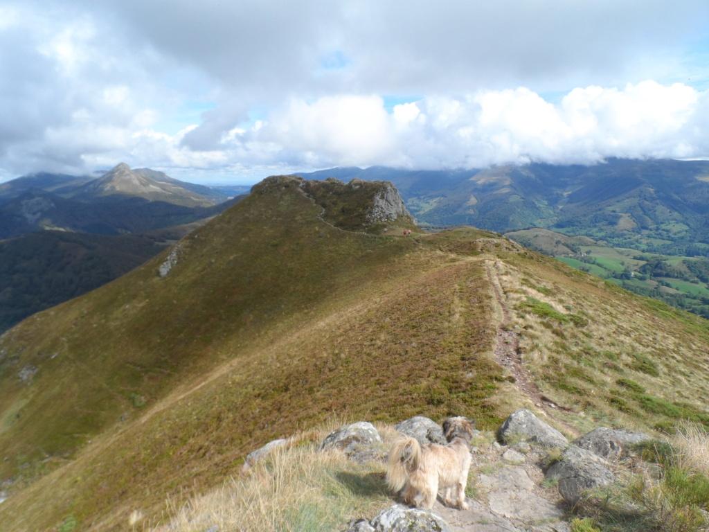 Votre sommet préféré des monts du Cantal  Sd18_116