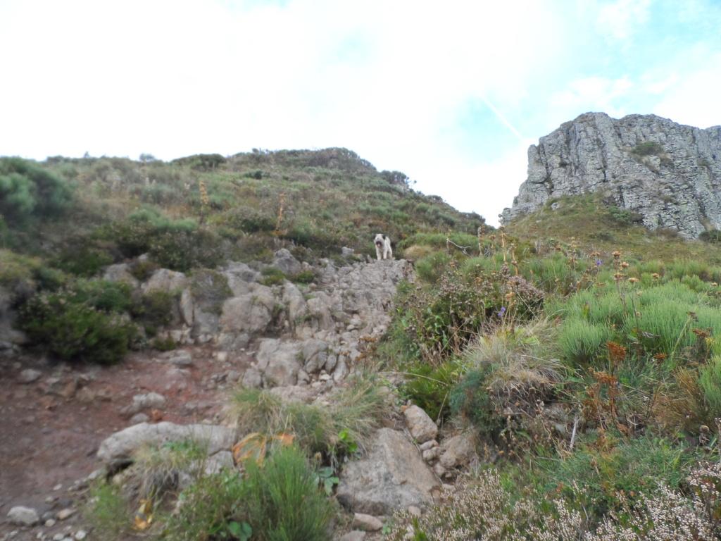 Votre sommet préféré des monts du Cantal  Sd18_122
