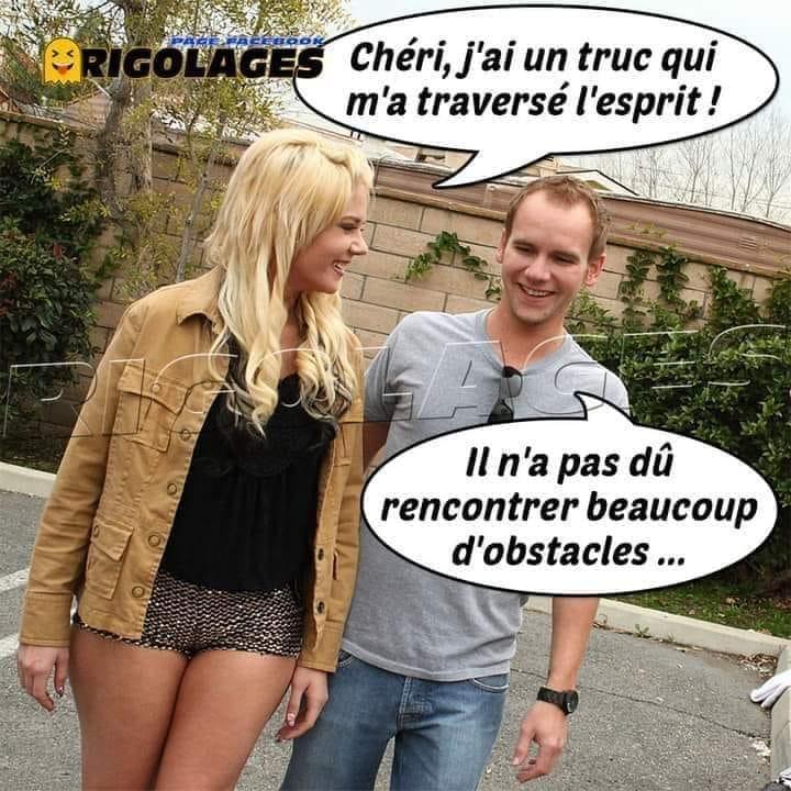 Humour du jour - Page 20 13123610