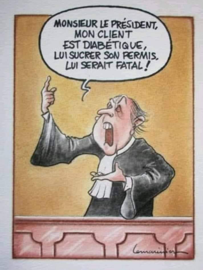 Humour du jour - Page 22 13667310