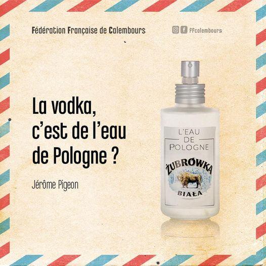 Humour du jour - Page 24 14669810