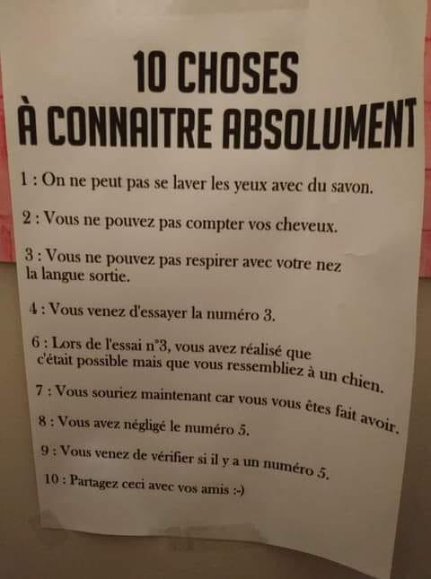 Humour du jour - Page 24 14796410