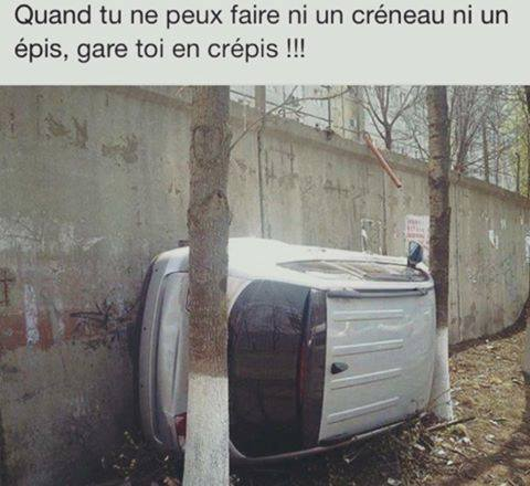 Humour du jour - Page 5 15032710