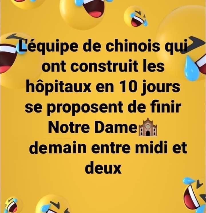 Humour du jour - Page 29 17250210