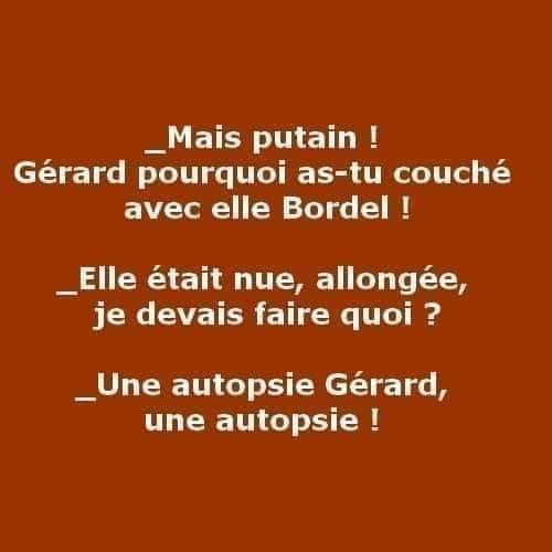 Humour du jour - Page 33 19624310