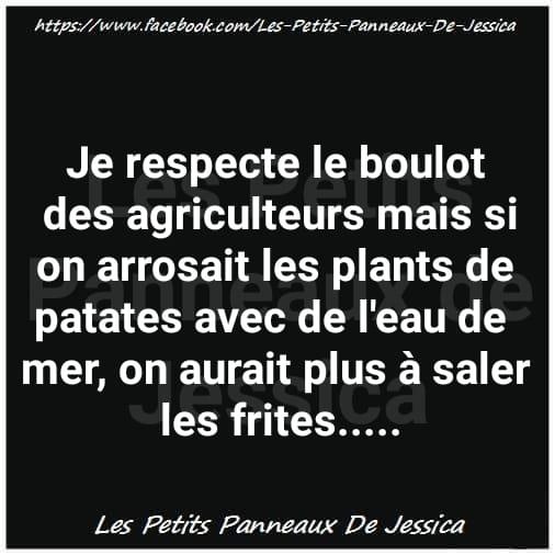 Humour du jour - Page 35 39442810