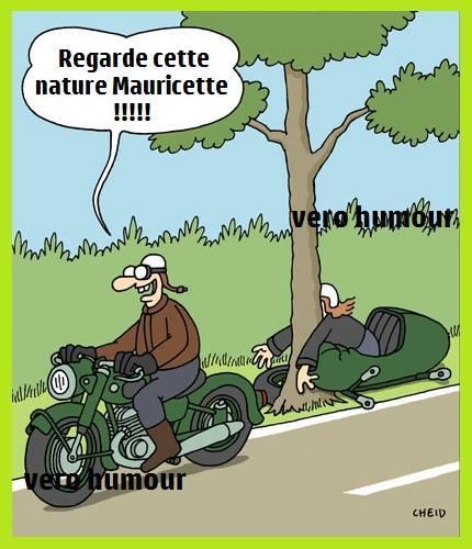Humour du jour - Page 3 44836510