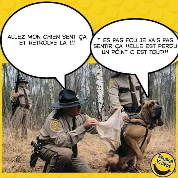 Humour du jour - Page 12 51562110