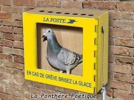 Humour du jour - Page 31 78045310