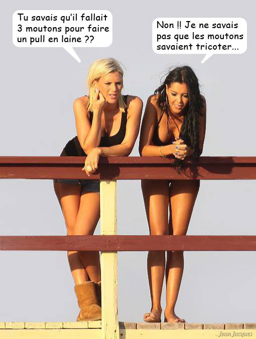 Humour du jour - Page 5 92839810