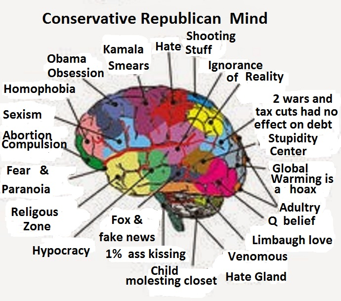 Inside The Conservative Mind... Don't Go Alone Conser10