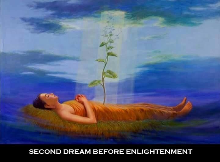 5 Điềm Báo Đức Phật Trước Khi Thành Phật  Mo2-1310