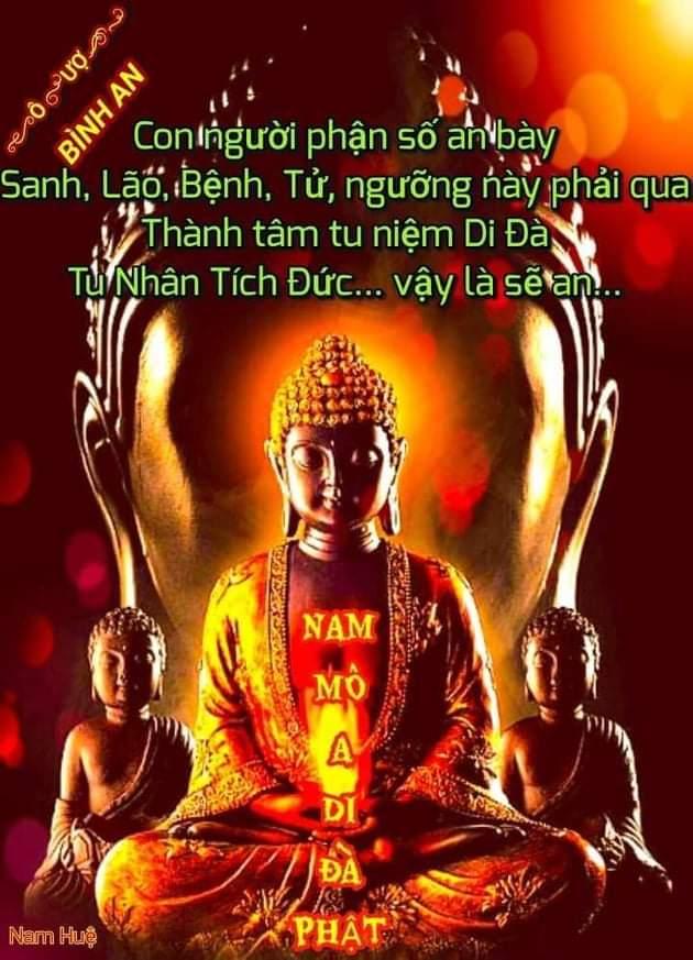 Tiến Trình Tu Phật  Receiv47