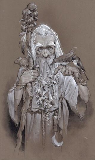 JJ - Radagast (le Druide) - Page 2 Nath_010