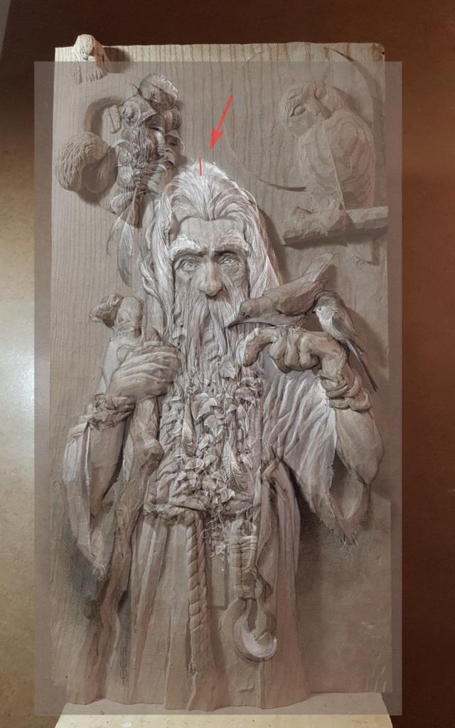 JJ - Radagast (le Druide) - Page 2 Test_210