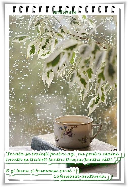 Cafeaua de dimineata - Page 22 -l5muk10