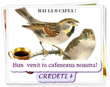 Cafeaua de dimineata - Page 22 _x0q9e10